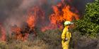 Scrub fire in Rotorua - photos