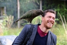 Alex Taylor is impressed with the results of intelligence tests on kea. Photo / Supplied