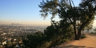 The view of Los Angeles from Griffith Park. Photo / Getty Images