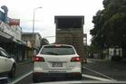 Shira makes her way through Mt Eden Village in Auckland. Photo / Twitter