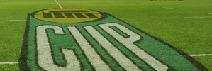 The ITM Cup logo shown on the turf at McLean Park, Napier. Photo / Getty Images