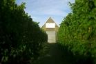 Palliser Estate winery. Photo / Supplied