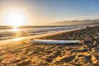 Kiwis in search of the sun