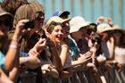 Why do so many NZ music festivals fail?