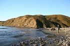 Bring your togs to Makara. The road ends at the beach which is pretty wild but a super place to check out life in the rock pools. Photo / NZME
