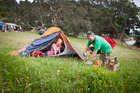 Camping is a treat at Tapapakana Regional Park.