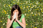 Sufferers were finding their symptoms were worse than usual, and their usual antihistamine was not always working. Photo / iStock