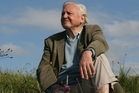 David Attenborough's Conquest of the Skies, TV1 at 7.30pm on Sunday: When David Attenborough and his devoted crew get to work on something you just know it is going to be very special. And in this series he touches upon creatures dear to my heart. The birdies.