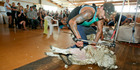 A Kereru woolshed hosted a three-stand Ewe shearing World record attempt.  22 December 2015.