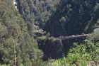 A Tasman Police spokeswoman said 36 people were involved in the crash. Photo / Jodi Gauci