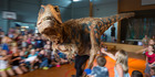 Photos: Baby T-Rex visits Birkenhead Primary School