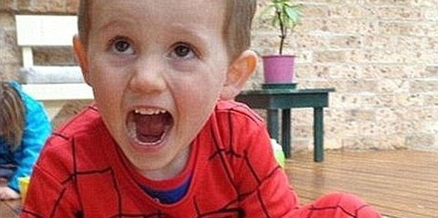 William Tyrrell, 3, disappeared while playing hide and seek with his sister.