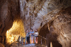 Ruakuri Cave's impressive entrance. Photo / Supplied.