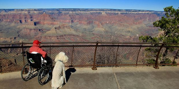 Norma with her dog Ringo at the Grand Canyon. Photo / Facebook, Driving Miss Norma
