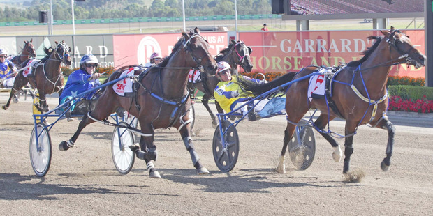 Natalie Rasmussen (left) drives Have Faith In Me to victory in the Miracle Mile at Menangle tonight. Photo / Stuart McCormick
