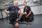 Cameraman Paul Griffin and Tauranga Vet Holly Rabone during filming for the new reality TV show based on the world of veterinarians in the Bay of Plenty. Photo / Andrew Warner