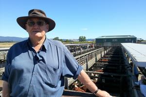Katikati dairy farmer Allan Williams