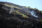 Firefighters dampen down last week's blaze at Glinks Gully. Photo / Michael Cunningham