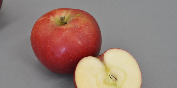 The weather is giving New Zealand's apple crop another boost.