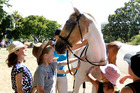 With just days till the Farmlands Horse of the Year Show, ticket sales are up on last year.