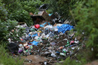 TIP OF THE ICEBERG: Rubbish is now a common scene at Northland's Ngaiotonga Scenic Reserve. PHOTOS/MICHAEL CUNNINGHAM