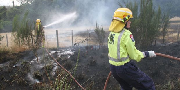 Firefighters tug hoses into position to finish off a vegetation fire, caused by arcing powerlines. PHOTO/ANDREW BONALLACK
