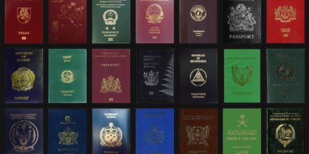Some Reasons and Meanings for Different Colored Passports