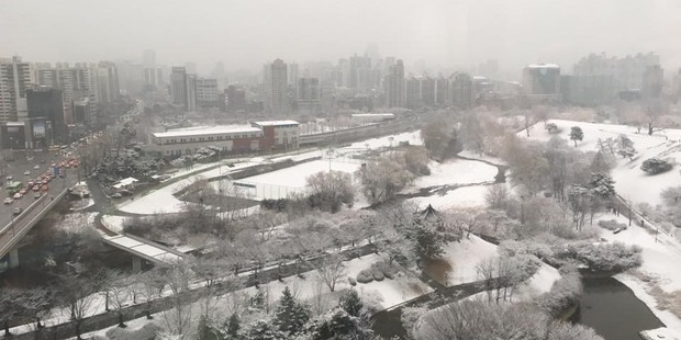 Snow in Seoul is threatening to disrupt New Zealand's Davis Cup tennis tie against South Korea this week.