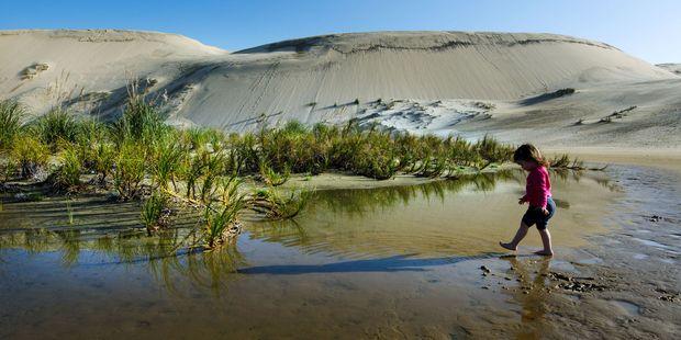 Te Paki sand dunes in Northland. Photo / 123RF