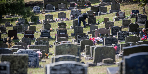 Over the next 30 years Auckland needed 30,000 to 60,000 burial plots. Photo / Jason Dorday