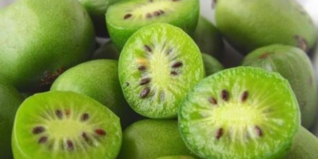 The fruit are similar in size to grapes but resemble kiwifruit and have a smooth, edible skin.