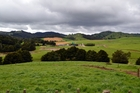 Ngatitara Farm, between Kaikohe and Awarua, is one of 10 which has sold to the Spencer family after an earlier sale to the Chinese-owned Dakang NZ Farm Group fell through. Photo / Debbie Beadle