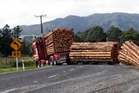 STANDSTILL: It was absolutely no go when a logging truck rolled and blocked State Highway 1 south of Kaitaia yesterday.PHOTO/DANIELLE COLLINGS