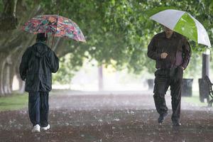 Rain set to return on Friday.