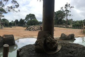 This latest project is part of Auckland's Zoo's overall 10-year redevelopment plan. Photo / Auckland Zoo