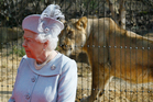 Britain's Queen Elizabeth II stands in front of an Asiatic lioness during a visit to officially open the new Land of the Lions, at London Zoo. Photo / AP