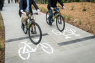 All users on shared paths must by law use shared paths fairly and safely, and to try and not hold anyone up. Photo / Michael Craig