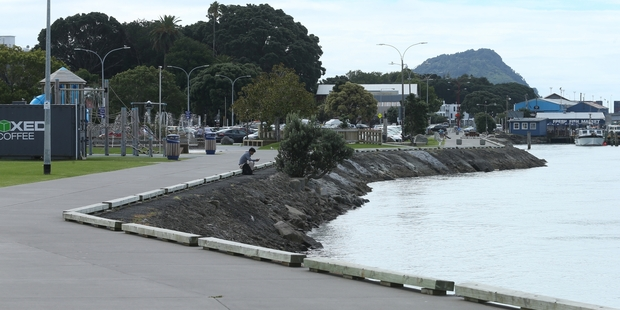 The Strand waterfront - new wharves and piers are planned. Photo/File