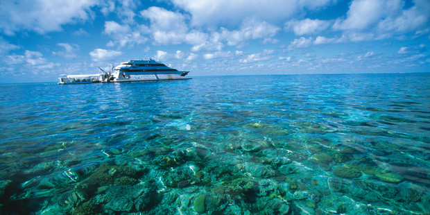 Get out on the reef aboard a Quicksilver Great Barrier Reef Tour. Photo / Tourism and Events Queensland