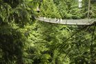 The Capilano suspension bridge spans the Capilano Canyon. Photo / 123RF