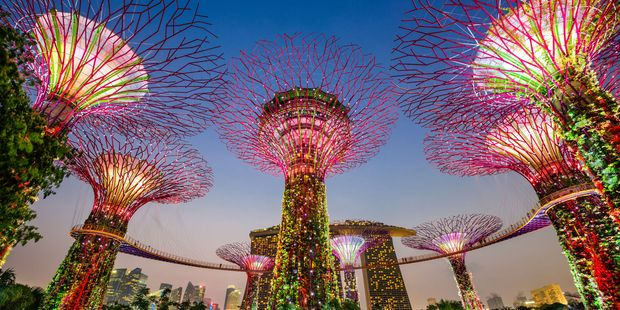 Singapore's Supertrees are a testament to the city's energetic ambition. Photo / 123RF