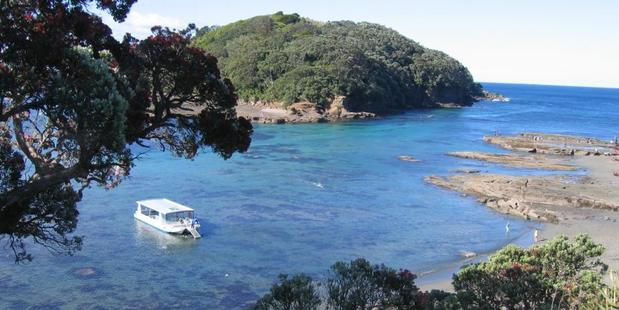 Goat Island Marine Reserve.