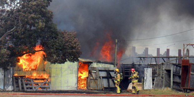 Masterton and Carterton firefighters, including station officer Doug Flowerday in the red helmet, successfully contained a blazing fire to a large tool and storage shed. PHOTO/CAROLYN POWELL