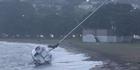 Watch: Wild weather batters Auckland