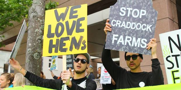 Animal rights group Stop Craddock Farms are celebrating the victory. Photo / Stop Craddock Farms Facebook