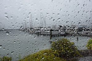 Heavy rain was expected to hit the Bay today and tomorrow.