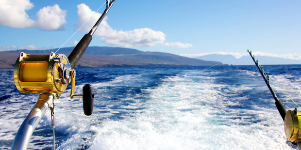 Dean Young was told to take a polygraph after the promoter of the Mega Fish competition refused to accept the catch was legitimate. Photo / iStock