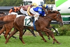 Luna Rossa gets up to win the Courtesy Ford Manawatu Sires Produce Stakes at Awapuni yesterday. Photo / Race Images PNTH