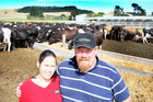 HARD TIMES: Good beef prices and the sale of 150 cows are helping Turakina sharemilkers Lois and Nathan Smith stay afloat.PHOTO/ STUART MUNRO