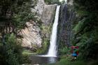 Hunua Falls in south Auckland. Photo / Michael Craig